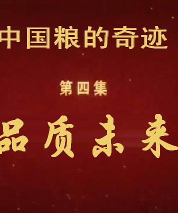 中国粮的奇迹